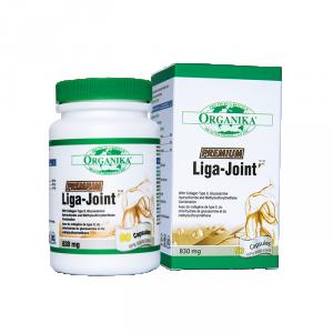 Liga-Joint-4