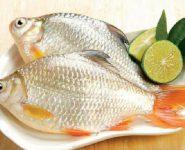 7 món ăn bài thuốc bồi bổ cơ thể từ cá diếc