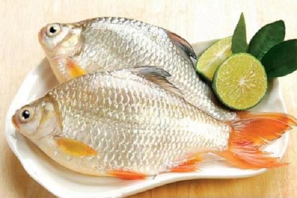 Cá diếc phối hợp với sa nhân, tía tô, gừng tươi chữa buồn nôn, ăn kém chậm tiêu ở phụ nữ có thai.