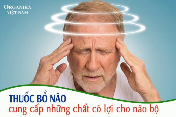 Thuốc bổ não được xem như là một loại thuốc bổ trợ chức năng