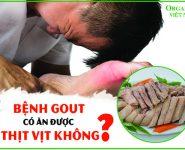 Bệnh Gout có ăn được thịt vịt không? Bạn đã biết chưa?